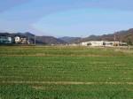 「白木屋」などのモンテローザ、自社ファームを拡大。有機JASによる水菜・リーフレタスを栽培