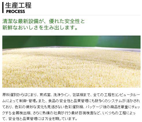 景気の影響を受けモヤシの消費拡大。種となる中国産:緑豆の価格高騰で販売しても利益にならないモヤシ・ビジネス