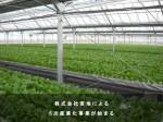 三菱樹脂、農業資材事業強化で日本ポリエチレン保有の「みかど化工」株式を取得