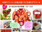栃木県の四季成り・夏秋イチゴ「なつおとめ」の消費拡大PR