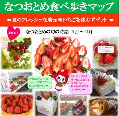 栃木県が開発した夏秋イチゴ「なつおとめ」に関するリーフレット作成、生産・消費拡大をPR