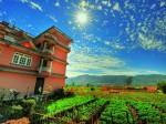 ネパール・カトマンズ市による都市型農業・屋上ファームの普及、住民へのトレーニングも実施