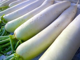 東北大と農研機構、ダイコンの辛み成分を作り出す遺伝子を発見