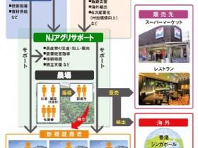 JA全農・西鉄による共同事業、佐賀県基山町で植物工場によるトマト栽培を開始
