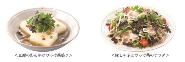 エスビー食品、「和風ベビーリーフ のっけ菜」など発売
