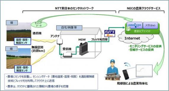 NTT東日本とNECなど、長距離無線通信を活用した露地栽培向け農業ICTソリューションの実証実験を実施