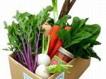 タキイ種苗、坂ノ途中の「お野菜BOX」で機能性成分を含んだ野菜セットを限定販売