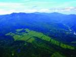 ノエビア農場が有機JAS圃場認証を取得、オーガニック化粧品の一貫生産目指す