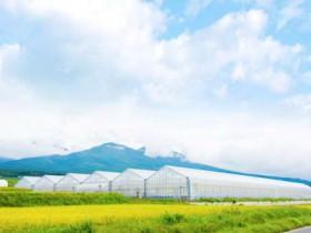 オリックス八ヶ岳農園、植物工場・水耕施設の2期工事が完了。年間300トン出荷体制へ