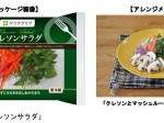サラダクラブ、国産のクレソンを使用した大人向けのサラダ「クレソンサラダ」を発売