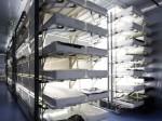 パナソニックの福島工場 デジカメ生産から植物工場としての拠点活用へ