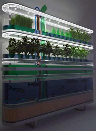 上海万博における植物工場(野菜工場)に関するまとめ(日本の自動化:植物工場、オランダ:生態系のミニチュア版を再現)