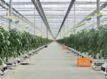 山梨県による企業の農業参入セミナーが10/27に開催。植物工場の現地視察も実施