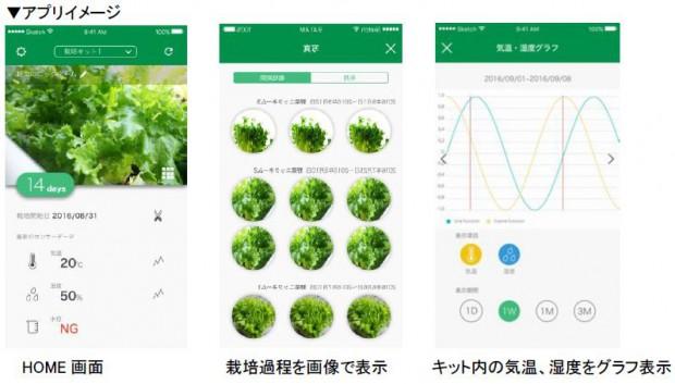 沖縄セルラー電話、植物工場の運営ノウハウとIoTを活用した家庭用水耕栽培キットを来年2月発売