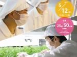 ソーシャルハウス、植物工場を活用した農福連携セミナー&見学会を5/12に開催