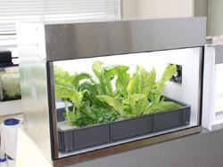 教育向けの小型植物工場を開発<日新インダストリー>