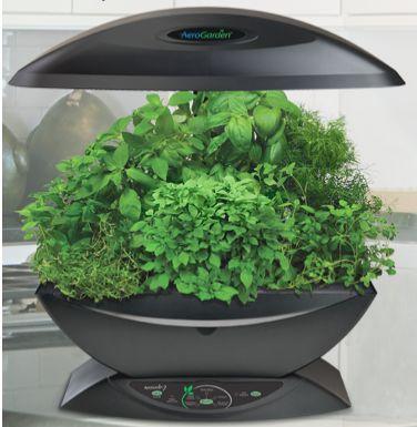 簡単に野菜が栽培できる「デザイン性の高いミニ植物工場」:半年くらいは継続的にハーブ類を栽培可能