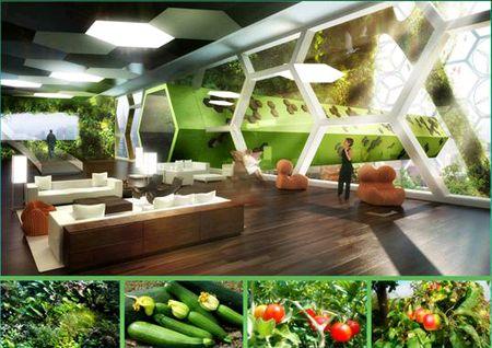 丸紅の植物工場(土壌栽培)ビジネスに関する設立経緯と今後の取り組みについて(住宅マンションへの導入)