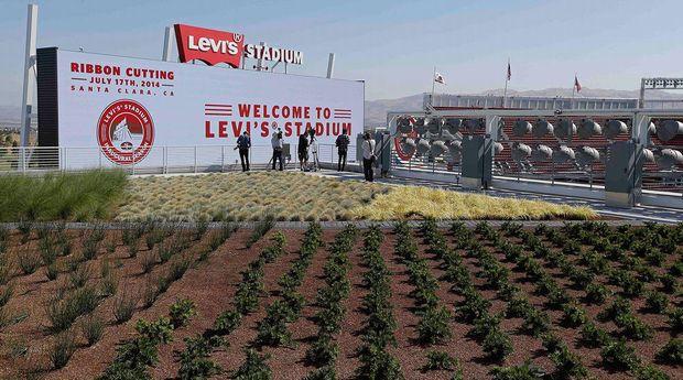 フットボール49ersスタジアムにて屋上菜園を実践。都市型農業を通じて環境保全・地域貢献へ