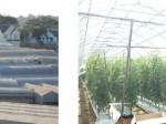 ルートレック・次世代養液土耕システム、ベトナム・ダラット高原にて実証調査を実施