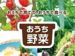 サカタのタネ「コンシェルジュ・サービス」付き野菜苗「おうち野菜」を販売開始