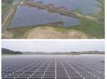 SBIエナジー、営農型太陽光発電所が千葉県匝瑳市で稼働開始