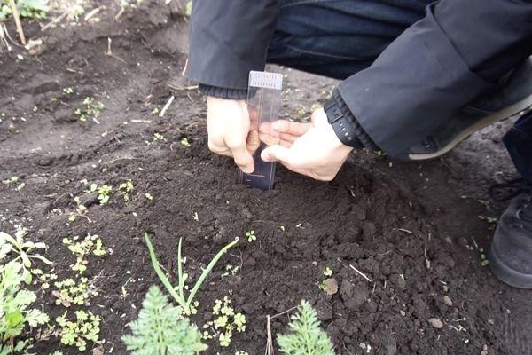 電子回路を印刷した農業用センサーシステム「SenSprout Pro」発売