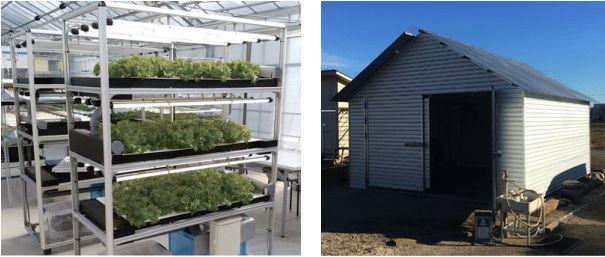 セプトアグリ、100万円でスタートできる簡易植物工場「EZ水耕ファクトリー」を販売開始