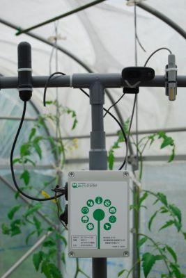 セラク、10万以下にて可能な圃場モニタリングシステム「みどりクラウド」を発売開始