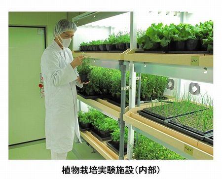 資生堂、植物工場や自社農場の拡大にて化粧品の原料生産へ