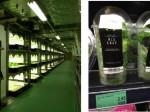 LA DITTA、人工光型植物工場のASEAN輸出に向けシンガポール18店舗でテスト販売