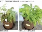 リッチェル、植物管理が手軽でそのまま植え付けOKの「うるるん培養土」など2品販売