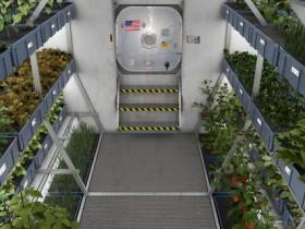 国際宇宙ステーション内の植物工場にてレタスを初めて試食