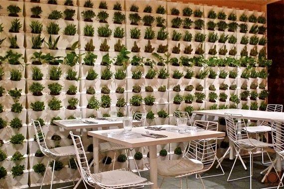 スペインでも店舗併設型植物工場タイプのレストランがオープン