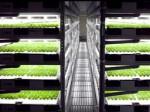 spread_plantfactory880