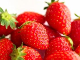 ローム、イチゴ植物工場の事業者を2月末まで募集。新規参入向けに栽培ノウハウ提供
