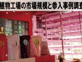 台湾・植物工場の市場規模と参入事例調査 2015【調査報告レポート】