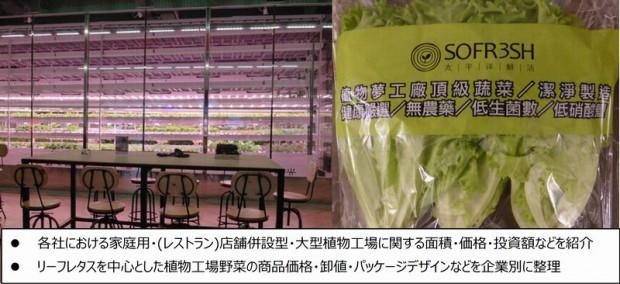 【調査報告】台湾・植物工場の市場規模と参入事例調査 2015