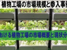 台湾における植物工場の市場概要と現状分析(1)