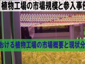 台湾における植物工場の市場概要と現状分析(2)