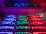 LED植物工場、玉川大学サイテックファームが日産3200株の施設稼働