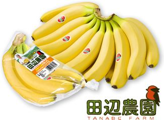 ANAフーズが独占契約する田辺農園バナナ・国内販売開始10周年の記念レセプションを開催