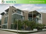 三井化学アグロ、タイの農薬会社であるSotus社の株式を追加取得