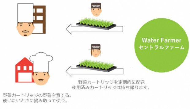 東京エレクトロン、植物工場を活用した究極鮮度の「今摘み野菜」を届けるサービス「Water Farmer」を提供開始