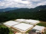 植物工場によるトマト生産の田園倶楽部奥出雲が倒産を申請