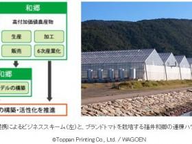 凸版印刷、次世代型農業ビジネスを手がける株式会社福井和郷と資本・業務提携へ