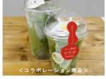 サラダ専門店にて植物工場野菜とドレッシングのセット商品を販売