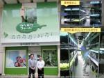 商店街の空き店舗を活用した人工光型植物工場「ウベモクファーム」の初収穫