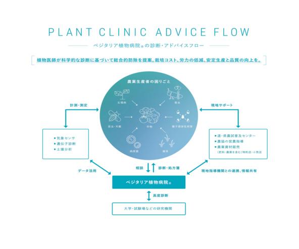 ベジタリアが植物医師による生産者向けサービスを行う 『ベジタリア植物病院(R)』を開院