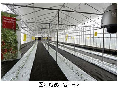 富士通、植物工場など日本の最新農法を紹介するショールームをハノイに開設